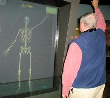 eh-movement-bones