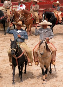 san-antonio-male-riders
