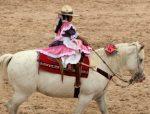 san-antonio-young-rider1