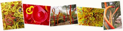 View Chihuly 1