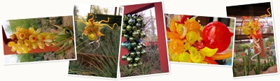 View Chihuly 3