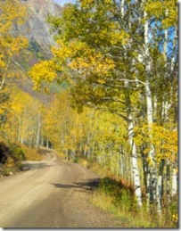 Curving Gothic Road Thru Aspen