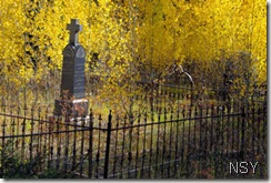 Leadville Grave with Aspen