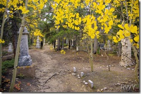 Mount Baldy Cemetery in Fall
