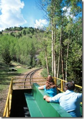 Train_Open Car
