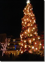 Broadmoor Tree Lighting