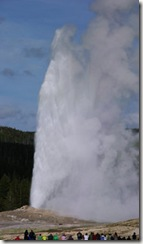 Old Faithful Geyser - Bob