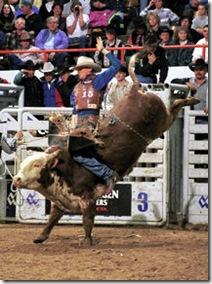 NWSS - Bull Riding - PRB3