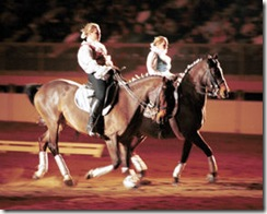 NWSS - Dancing Horse 3