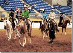 NWSS - Paint Horse Show