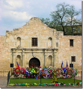 San Antonio - Alamo with Flowers