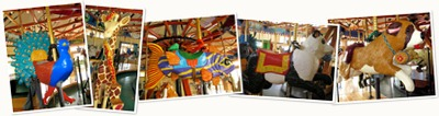 View Slideshow for Carousel Blog