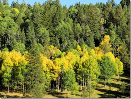 Aspen Promises - West of Angel Fire - B