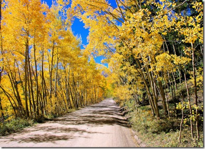 Boreas Pass Road - West Side 2 - B