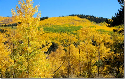 Golden Kenosha Pass - B