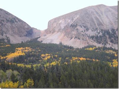 Aspen on LaVeta Pass 2 - B