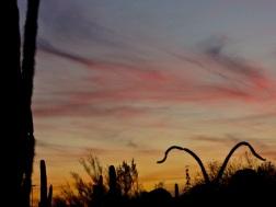 DBG Sunset