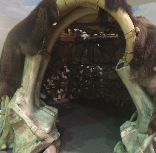 Mammoth Site 11