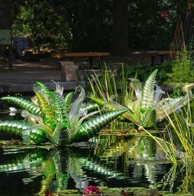 Green Hornets in Pond