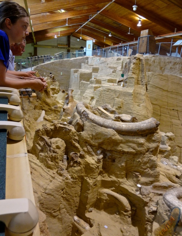 Mammoth Site 7