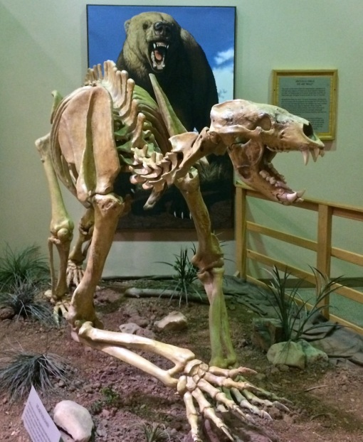 Mammoth Site 8