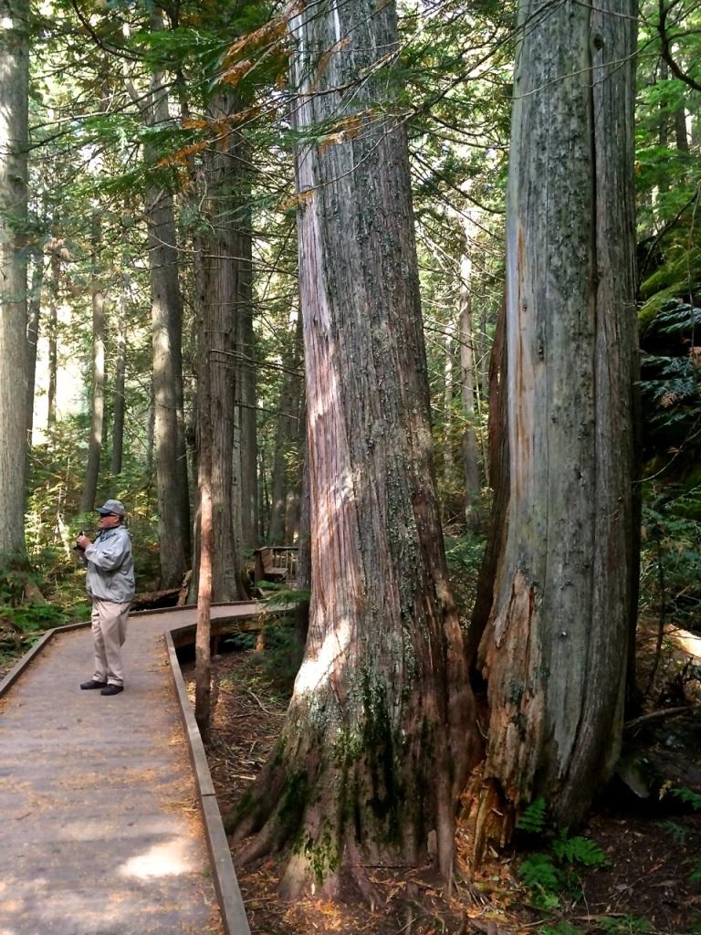 Bob on Trail od Cedars