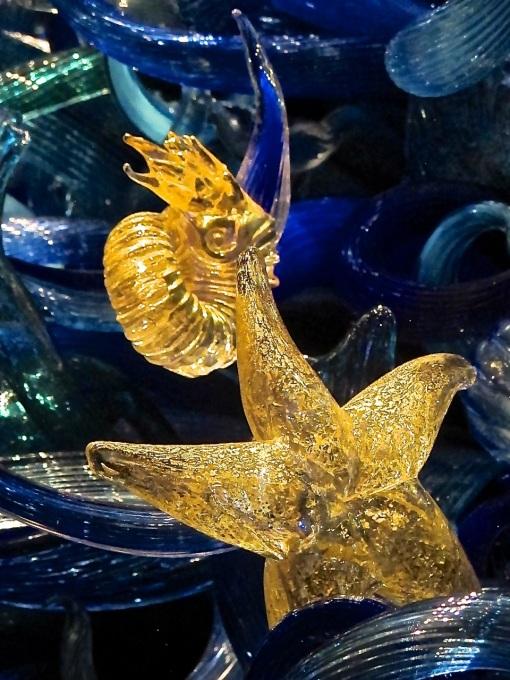Bob's Starfish