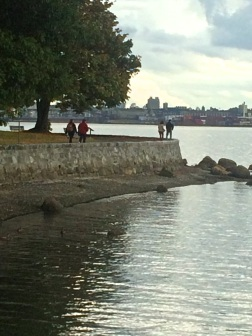 Walk in Stanley Park