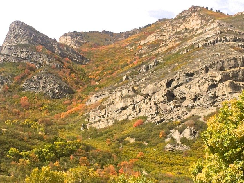 Provo Canyon - Autumn Color 2