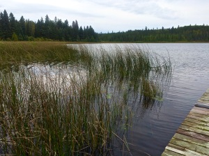 RMNP - Lake