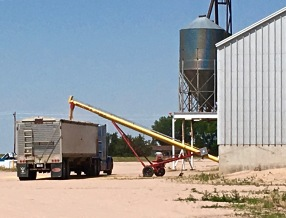 colorado-grain-loading